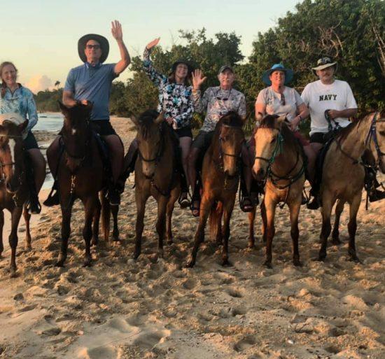 Catamaran_Rapscallion_St. Croix_horses