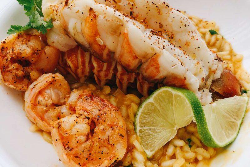 catamaran_excess_cuisine4