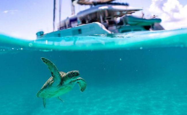catamaran_twin_flame_underwater-e1581209254884