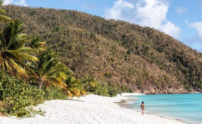 guana_island_beach