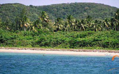 mosquito-pier-beaches-vieques-puerto-rico